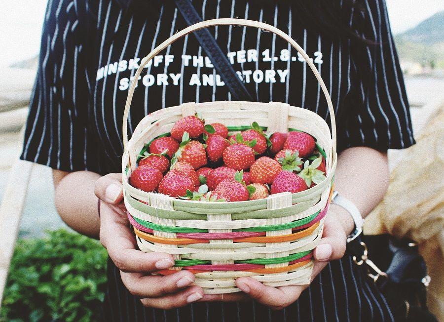 Quel lien entre alimentation et émotions ? Que manger pour être heureux ?